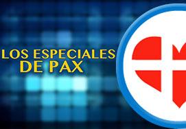 <h4>Especiales De Pax</h4>